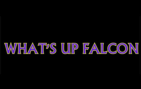 What's Up Falcon – Episode 1