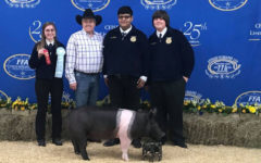 Winning third brings emotional moment in swine contest